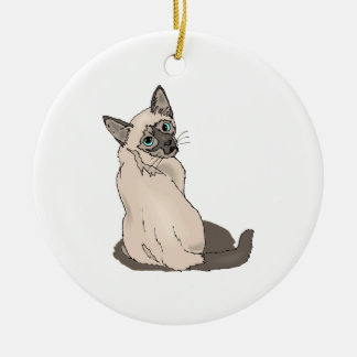 Gato siamés 2