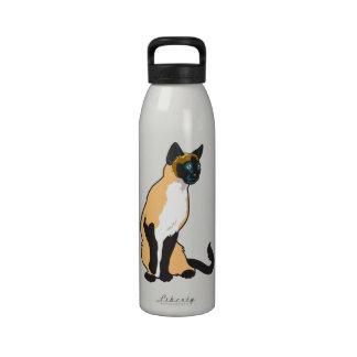 gato siamés botella de agua