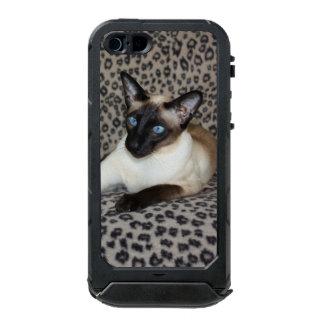 Gato siamés alerta funda para iPhone 5 incipio ATLAS ID