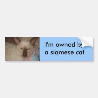 Gato siamés etiqueta de parachoque