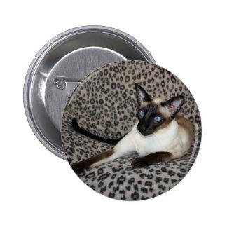 Gato siamés con los puntos del animal salvaje del pin redondo de 2 pulgadas