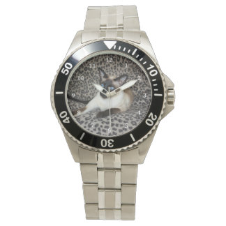Gato siamés con los puntos del animal salvaje del relojes de pulsera
