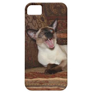 Gato siamés de bostezo iPhone 5 carcasas