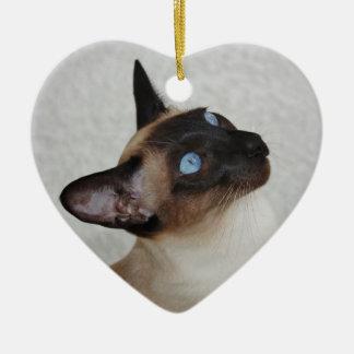 Gato siamés del punto del sello adorno de navidad