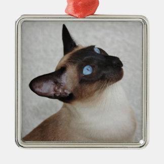 Gato siamés del punto del sello ornaments para arbol de navidad