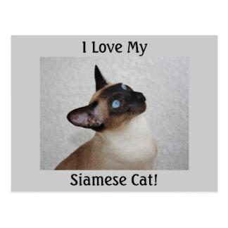 Gato siamés del punto del sello tarjetas postales