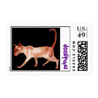 gato siamés del punto rojo franqueo