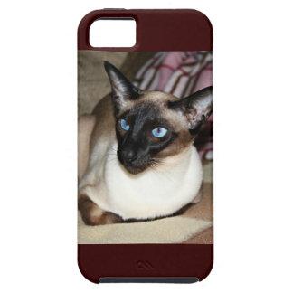 Gato siamés en el sofá iPhone 5 Case-Mate cobertura