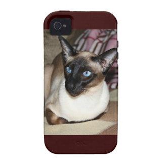 Gato siamés en el sofá iPhone 4/4S carcasas