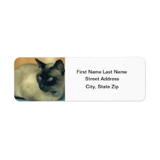 Gato siamés etiquetas de remite