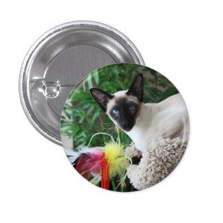Gato siamés hermoso que juega con el juguete pin redondo de 1 pulgada