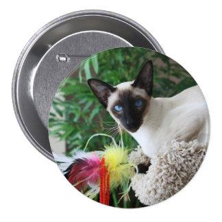 Gato siamés hermoso que juega con el juguete pin redondo de 3 pulgadas