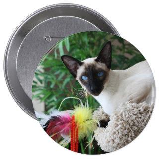 Gato siamés hermoso que juega con el juguete pin redondo de 4 pulgadas
