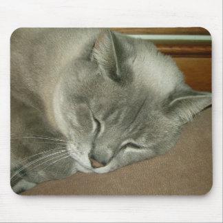 Gato siamés Mousepad del gatito Tapetes De Ratones