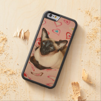 Gato siamés observado Squinty Funda De iPhone 6 Bumper Arce