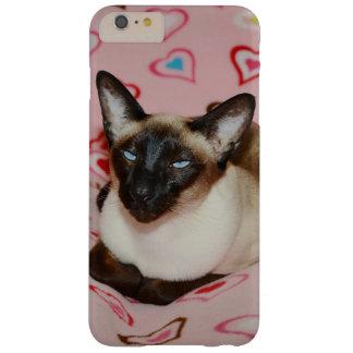 Gato siamés observado Squinty Funda De iPhone 6 Plus Barely There