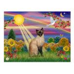 Gato siamés - otoño Sun Tarjetas Postales