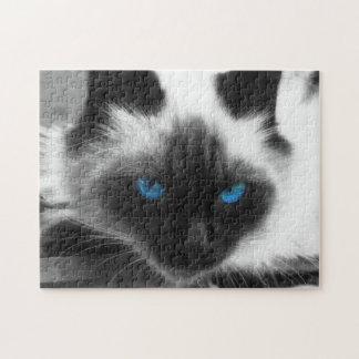 Gato siamés puzzle