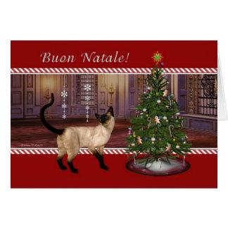 Gato siamés - tarjeta de Navidad italiana de Buon