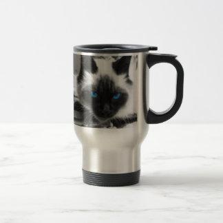 Gato siamés taza de café