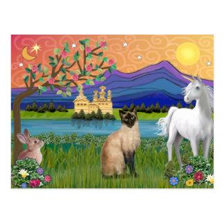Gato siamés - tierra de la fantasía tarjeta postal