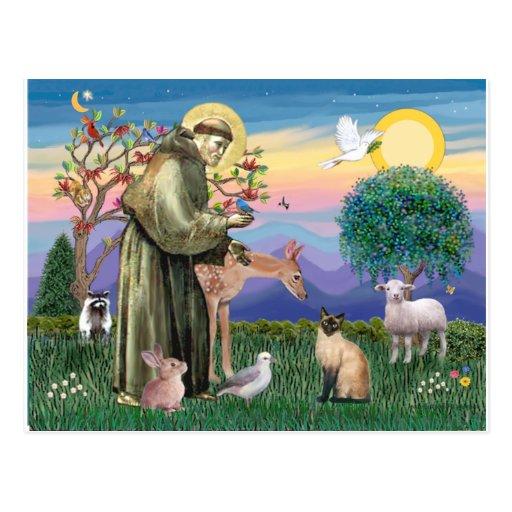 Gato siamés y St Francis Tarjetas Postales