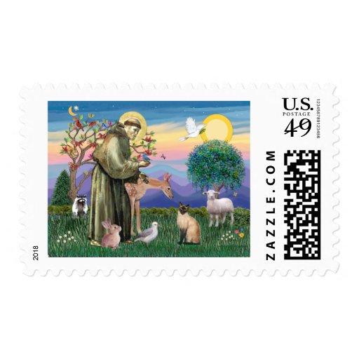 Gato siamés y St Francis Timbre Postal