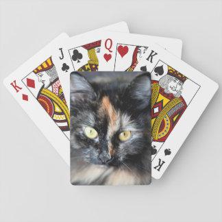 Gato siberiano baraja de cartas
