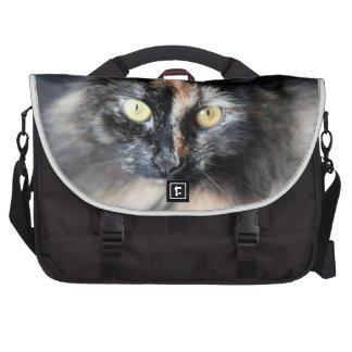 Gato siberiano bolsas de ordenador
