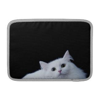 Gato siberiano funda macbook air