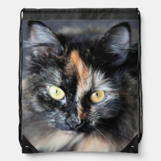 Gato siberiano mochilas