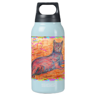 gato soleado del guijarro