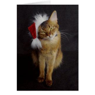 Gato somalí malhumorado en navidad del gorra de tarjeta de felicitación