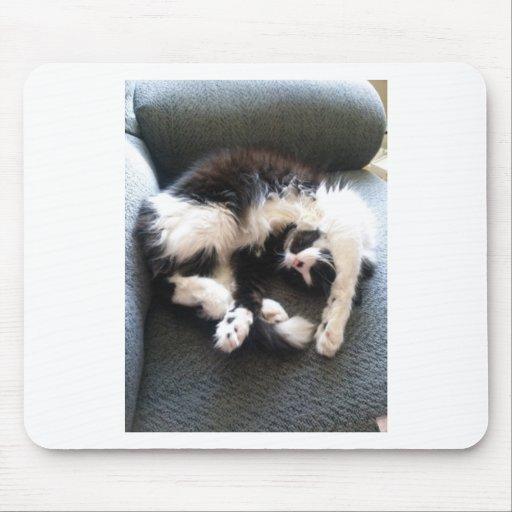gato soñoliento tonto tapetes de ratón