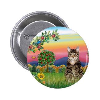 Gato (Tabby1) - país brillante Pins