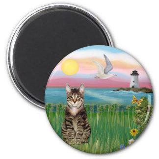 Gato (tabby) - faro imán redondo 5 cm