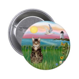 Gato (tabby) - faro pin