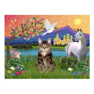Gato - (Tabby) - tierra de la fantasía Tarjeta Postal