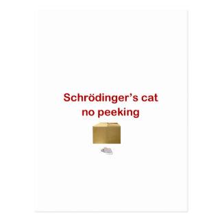 gato postal