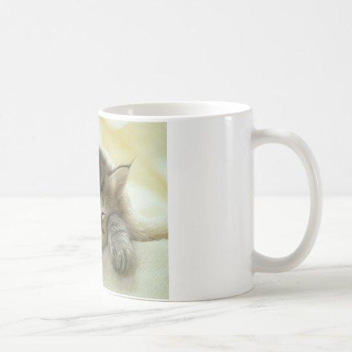 gato taza