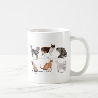 gato taza de café