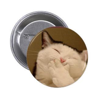Gato tonto Buton Pin Redondo De 2 Pulgadas
