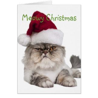 Gato tonto con el gorra de Santa Tarjeta De Felicitación