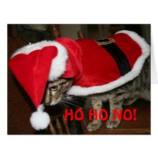 Gato tonto de Santa Tarjeta De Felicitación Grande
