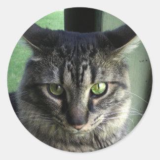 Gato trastornado pegatina redonda