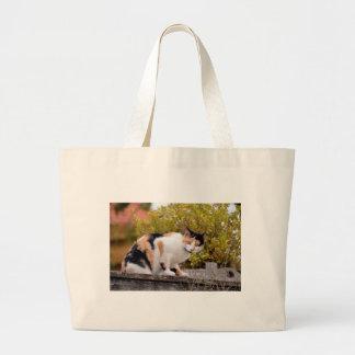 Gato tricolor bolsa lienzo