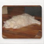 Gato turco soñoliento Mousepad del angora Alfombrillas De Ratones