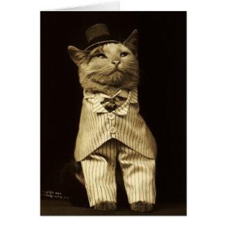 Gato vestido encima a partir de 1906 de tarjeta de