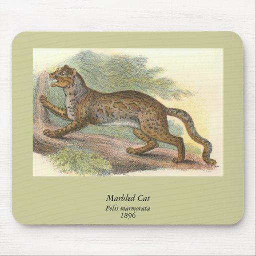 Gato veteado, marmorata del Felis Alfombrilla De Ratones