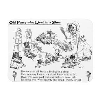 Gato viejo de Louis Wain en poesía infantil del Iman De Vinilo